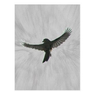 Bird in Flight Postcard