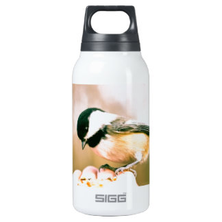 Bird in hand 10 oz insulated SIGG thermos water bottle