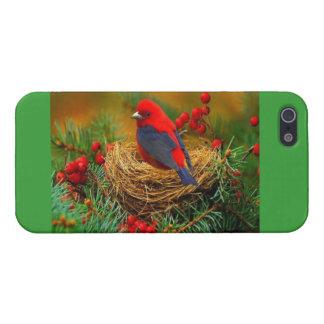 Bird in Nest iPhone Case
