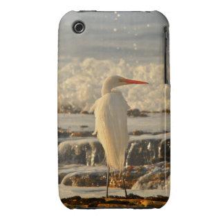 Bird in Paradise iPhone 3 Case