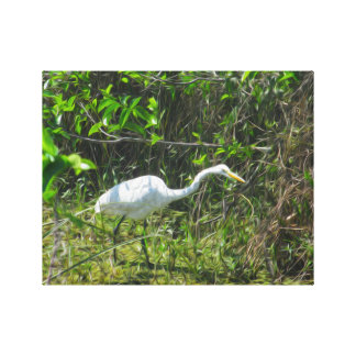 Bird in the Swamp Stretched Canvas Prints