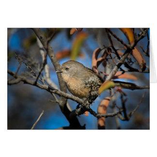 Bird in Tree Greeting Cards