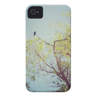 Bird in Tree iPhone Case, Case-Mate