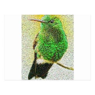 Bird.jpg Postcard