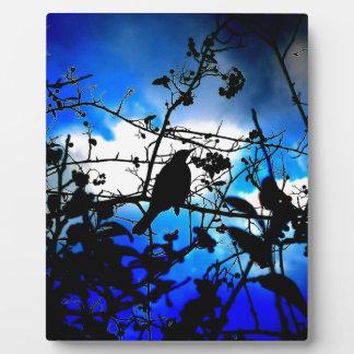 bird light peace calm plaques