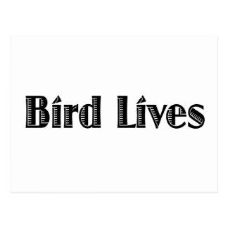 Bird Lives Postcard