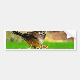 Bird Look forward to true love and hope Bumper Sticker