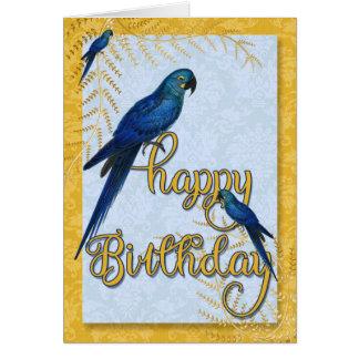 Bird Lover's Birthday Vintage Macaw Parrots Card