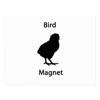 bird magnet postcard