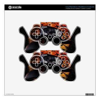Bird-man PS3 Controller Skin