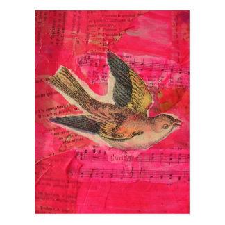 Bird Mixed Media  Hot Pink Background Postcard