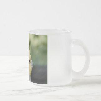 Bird 10 Oz Frosted Glass Coffee Mug