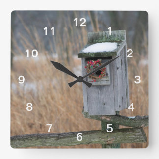 Bird, nest box with holiday wreath in winter square wall clock