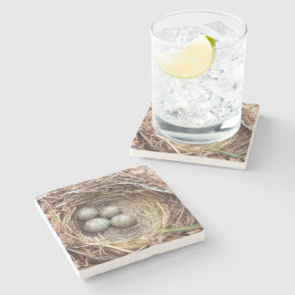 Bird Nest Eggs Photo Stone Coaster