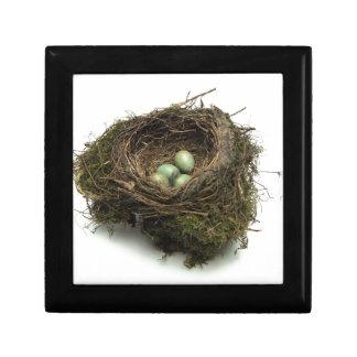 Bird Nest Keepsake Box