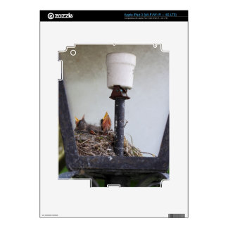 Bird nest in a street lamp. decals for iPad 3