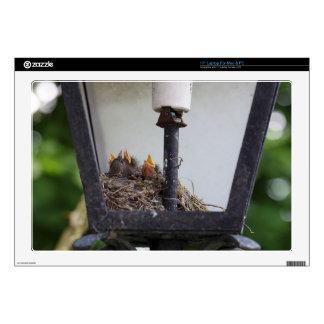 Bird nest in a street lamp. laptop decals