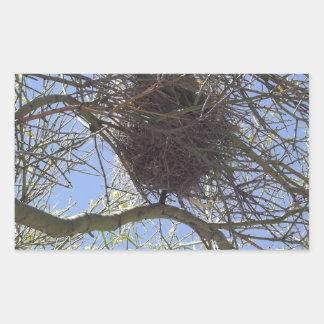 Bird Nest in Branches Rectangular Sticker