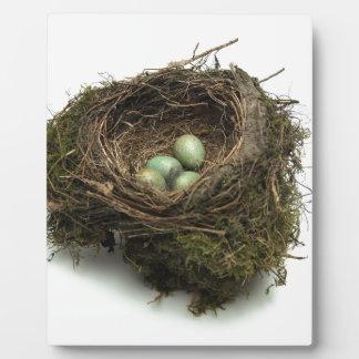 Bird Nest Plaque