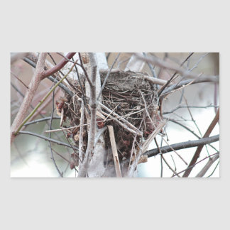 Bird nest rectangular sticker