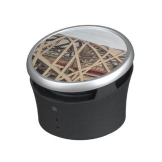 Bird Nest Stadium Speaker