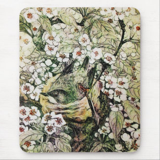 BIRD NEST ,white brown green yellow Mouse Pad