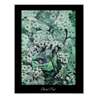 BIRD NEST ,white green black Poster