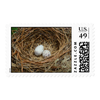 Bird nest with eggs postage