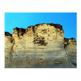 bird nests on rock face post card