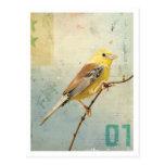 Bird No.4 Post Card