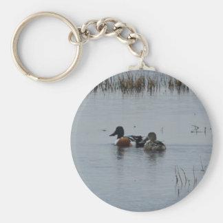 Bird Northern Shoveler Duck Nature Keychains