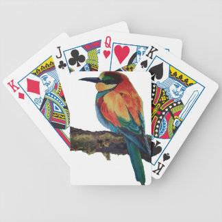 Bird of colors bicycle playing cards