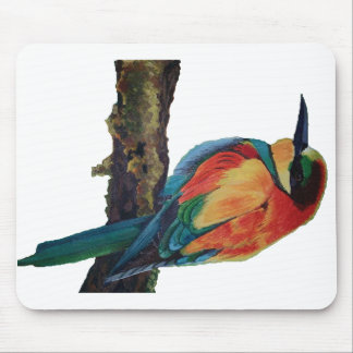Bird of colors mouse pad