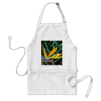 Bird of paradise adult apron