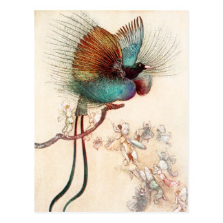 Bird of Paradise and Fairies Postcards