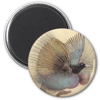 Bird of Paradise Art Magnet