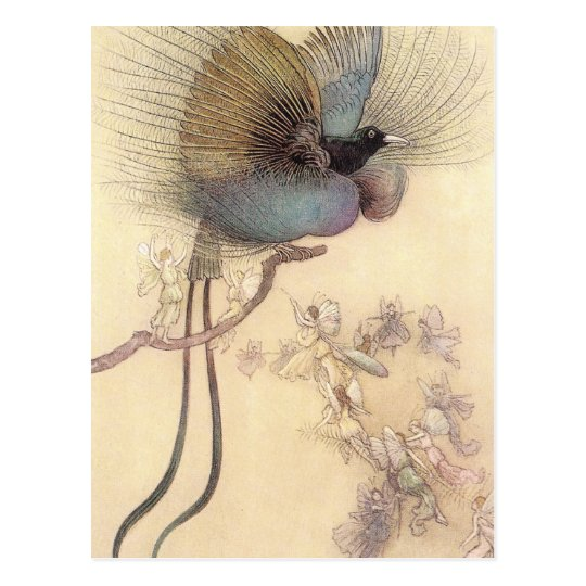 Bird of Paradise by Warwick Goble Postcard