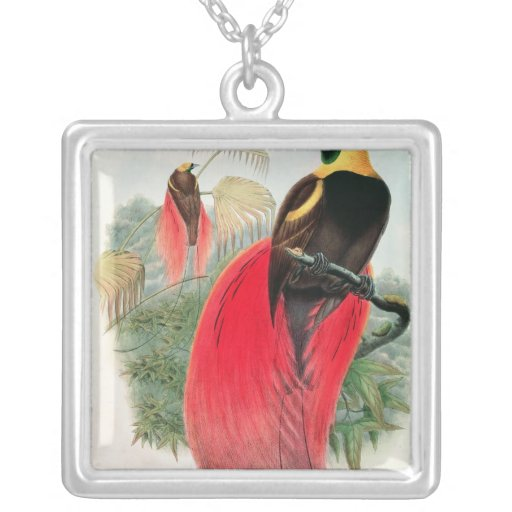 Bird of Paradise, engraved by T. Walter Square Pendant Necklace