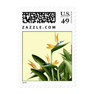Bird-of-Paradise Fantasy Plant Stamp