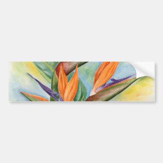 Bird Of Paradise Flower Art - Multi Car Bumper Sticker