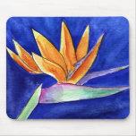 Bird of Paradise Flower Artwork Painting Mousepad