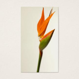 Bird Of Paradise Flower Business Card
