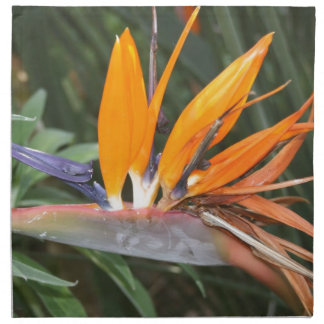 bird of paradise flower cloth napkin
