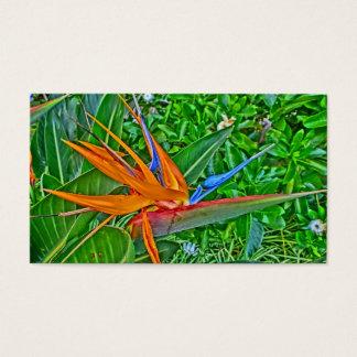Bird of Paradise flower custom business cards