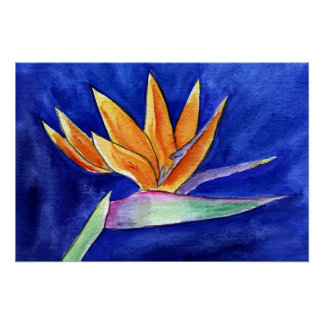 Bird of Paradise Flower Painting Art Poster Prints