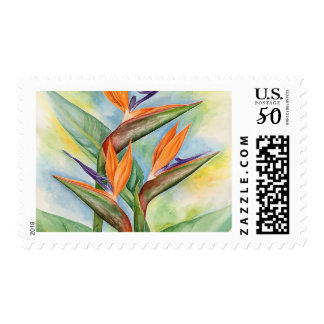 Bird Of Paradise Flower Painting Postage Stamp