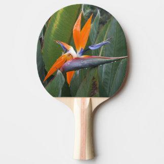 Bird Of Paradise Flower Ping Pong Paddle