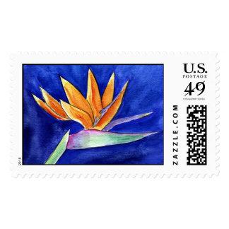Bird of Paradise Flower Postage Stamp