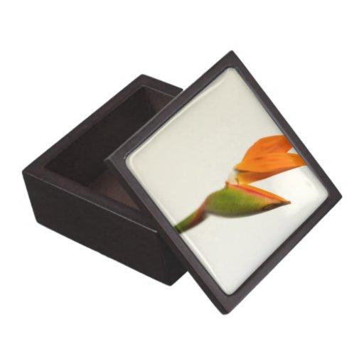 Bird Of Paradise Flower Premium Keepsake Box