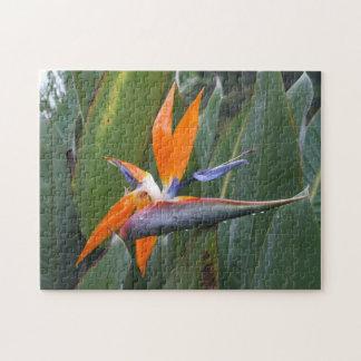 Bird Of Paradise Flower Puzzle
